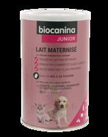 Biocanina Lait poudre maternisé B/400g à ROQUETTES