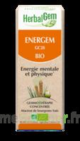 Herbalgem Energem Solution buvable bio Fl cpte-gttes/30ml à ROQUETTES